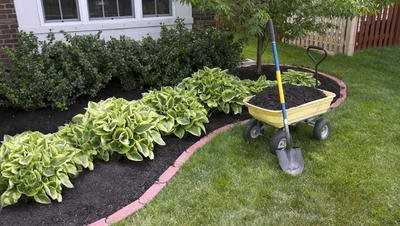 Mulching | Services
